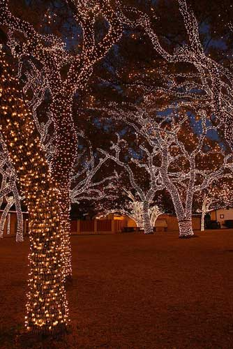 Simple Outdoor Christmas Light Decorating Ideas Christmas